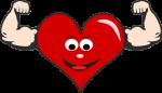 heart-865226_640