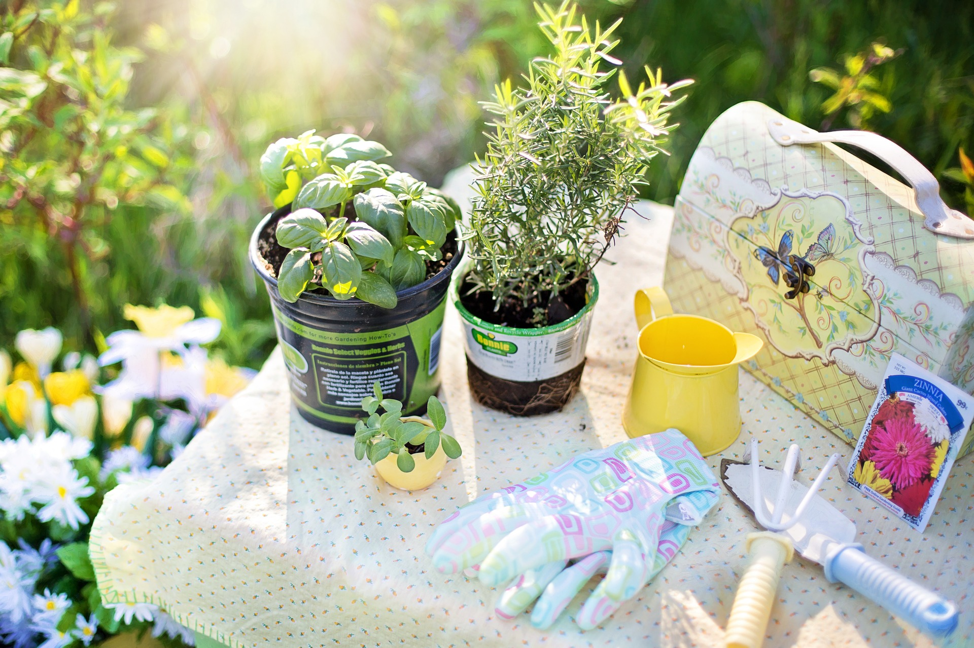 Schöner Garten mit wenig Mühe - Sweet Sixty