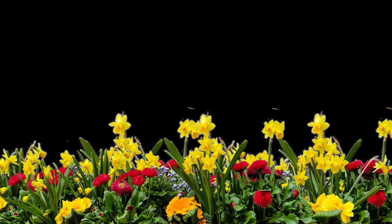 Fit in den Frühling - Sweet Sixty